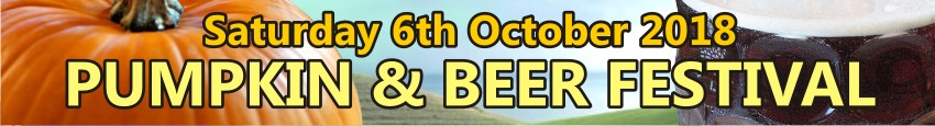 Pumpkin and Beer Festival